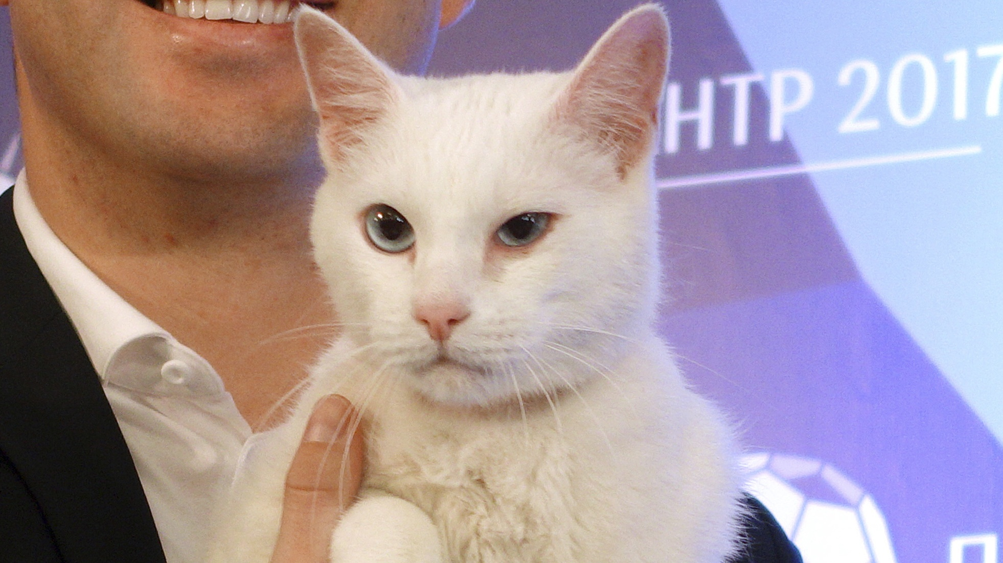 Russia unveils 'psychic' cat ahead of Confederations Cup